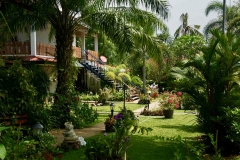 BuildingB-garden